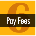 Step 6 - Pay Fees