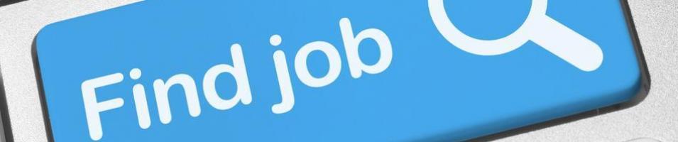 job search picture