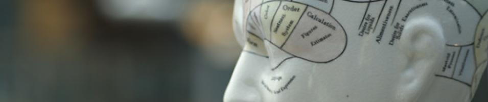 Social and Behavioral Sciences - Image of a mapping of the mind.