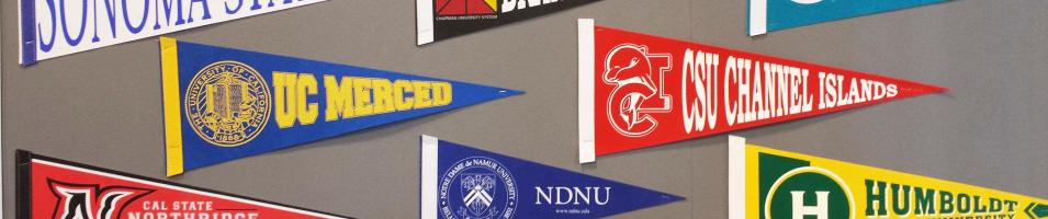 picture of university pennants