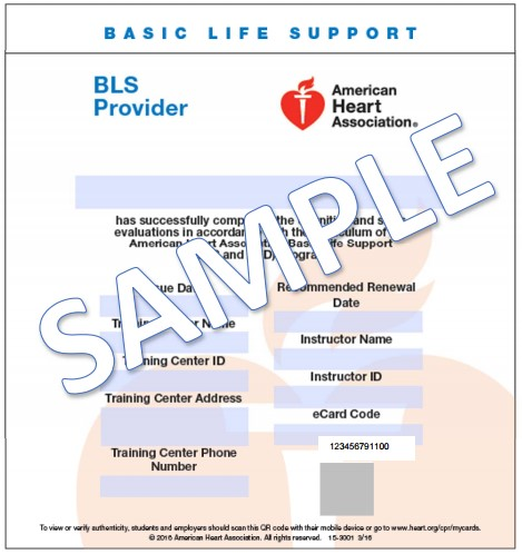 Example of CPR Card